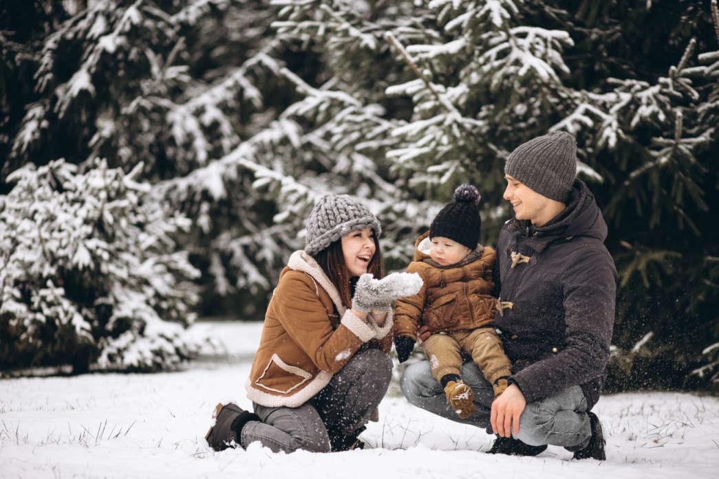 https://pl.freepik.com/darmowe-zdjecie/rodzina-w-lesie-zimą_1612441.htm